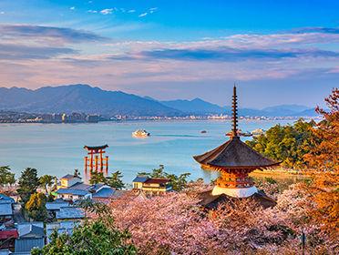 VIKING establish local presence in Japan